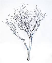 silver metallic manzanita branches 18 24 blooms branches