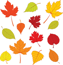 free leaf templates of leaves search templates for