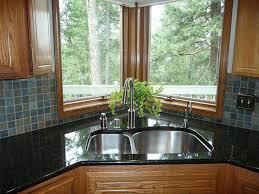Buy Stainless Steel Kitchen Sink by Corner Kitchen Sink Is Good Positions Kitchen Blanco Kitchens