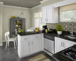 Color Ideas For Kitchen by Best Color For Kitchen Cabinets Home Design Ideas