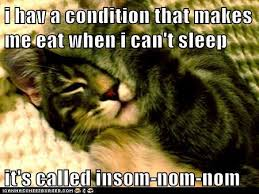 Insomnia Meme - lolcats insomnia lol at funny cat memes funny cat pictures