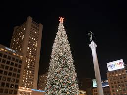 christmas tree san francisco union square christmas trees 2017