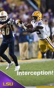 798 best lsu images on pinterest louisiana lsu tigers and lsu