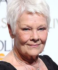 judi dench hairstyle front and back of head judi dench 17 women who dgaf about wrinkles and we love them for
