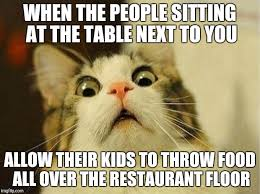 Appropriate Memes For Kids - scared cat meme imgflip