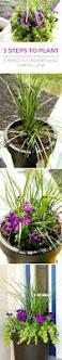 25 best front porch plants ideas on pinterest porch plants