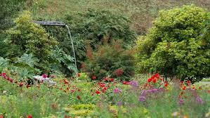 beautiful garden full of flowers and waterfall stock footage video