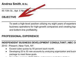 I Need A Good Resume Writing Resume Objective Berathen Com