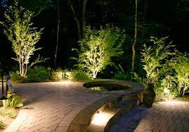 Landscape Lights Uplighting For Crape Myrtle In Pool Area Outdoor Lighting