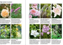 ask ella the best flowers for making easy boutonnieres garden