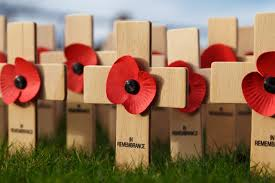 in remembrance free stock photo public domain pictures