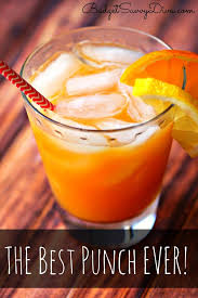 best 25 vodka punch ideas on alcoholic punch recipes