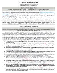 Lab Resume Examples Aaaaeroincus Wonderful Marketing Manager Resume Example With