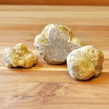 italian white truffle italian white truffles fresh shop d artagnan