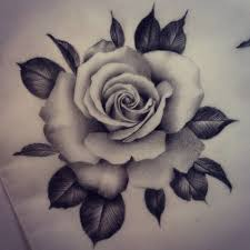 best 25 realistic rose drawing ideas on pinterest tattoo rose