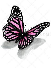 pink butterfly 3d asiftattooed com