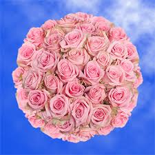 Candy Bouquet Delivery Pale Pink Roses Delivery Pink Candy Roses Global Rose