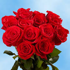 Global Roses Red Roses Valentine U0027s Day Delivery Global Rose