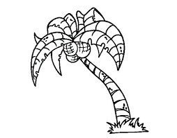 coloring pictures of a palm tree coloring palm tree coloring pages palm palm tree pictures coloring