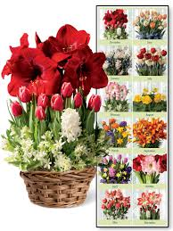 blooms flowers monthly flower delivery 12 months of blooms gardener s supply