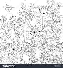 coloring page puppy cat sparrow bird stock vector 679044937