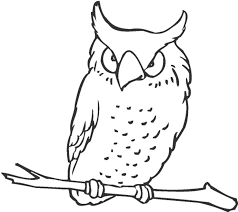 flying owl coloring pages kids coloring