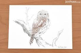 sakura pigma micron pen esdk003 size 003 black jetpens com