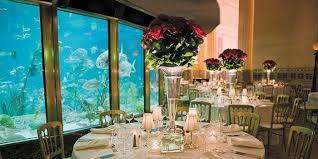 Affordable Wedding Venues Chicago Wedding At Shedd Aquarium Tbrb Info