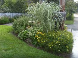 mailbox garden end of summer ornamental grass to cover crooked