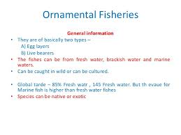 ornamental fisheries in a p problems and prospectus