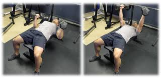 powerlifting bench press grip width how to increase your bench press bret contreras