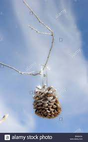 natural christmas ornament pine cone painted with silver paint