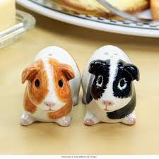 Cute Salt And Pepper Shakers by Animals Salt U0026 Pepper Shakers