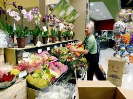new asheville publix open a look at store offerings