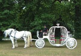 cinderella pumpkin carriage cinderella pumpkin carriage rentals in new jersey and