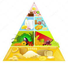 food pyramid u2014 stock vector agnieszka 2403678