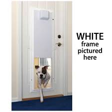 pet s electronic install cat flap in glass install secure dog door