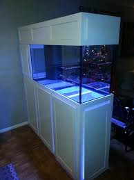 Aquarium Decor Ideas Modern Makeover And Decorations Ideas Room Divider Aquariums