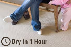 Professional Rug Cleaning Austin Carpet Cleaning Albert Lea Mn Heaven U0027s Best