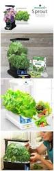 Smart Countertop by Garden Year Round Grow Fresh Herbs Vegetables Salad Greens