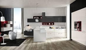 Kitchen Accessory Ideas - kitchen design fabulous best kitchen colors red kitchen design