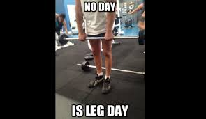 Calves Meme - no leg day for me best pictures and memes youtube