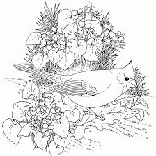 printable fairies coloring pages coloring home