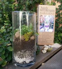 diy herb terrarium kit inactive crafting u0026 diy makerskit