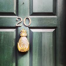front doors awesome pineapple front door 58 pineapple front door