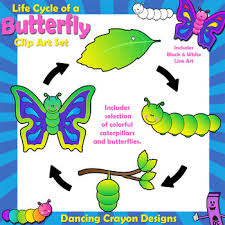 butterfly cycle clip sequence by crayon designs