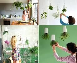 plant containers indoor u2013 eatatjacknjills com