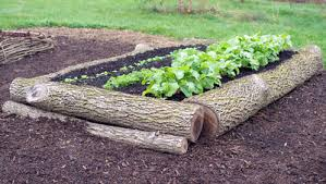 5 raised garden beds you can build in half a day rodale u0027s