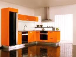 orange kitchen cabinets orange kitchen cabinet image of colors echoyogacoop com