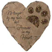 pet bereavement euthanasia cremation services grief counselling acadia